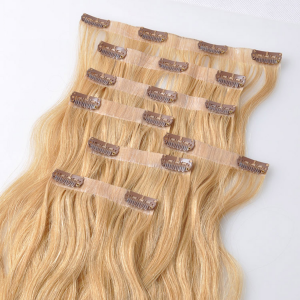 Cip-in High Quality Hair Extensions