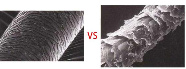 remy-vs-non-remy-hair