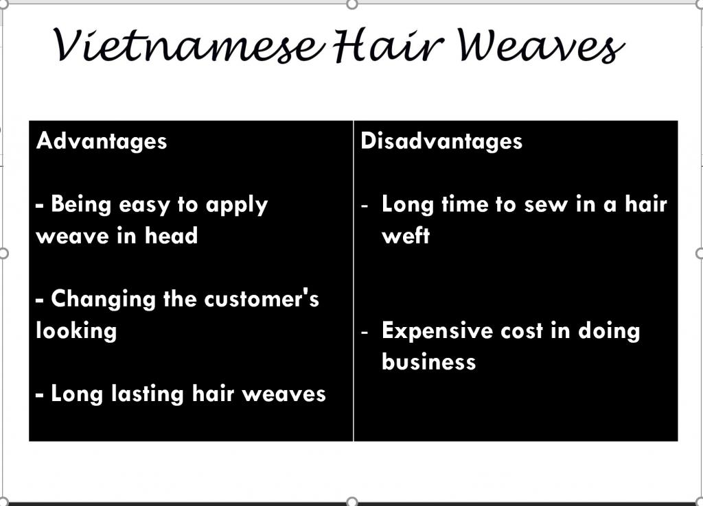 Vietnam hair weft 1