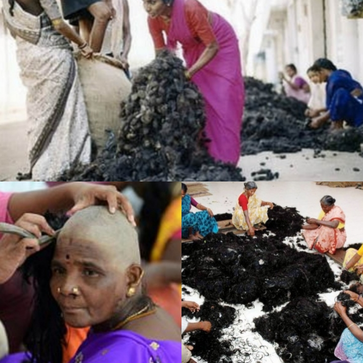 hair-factory-india
