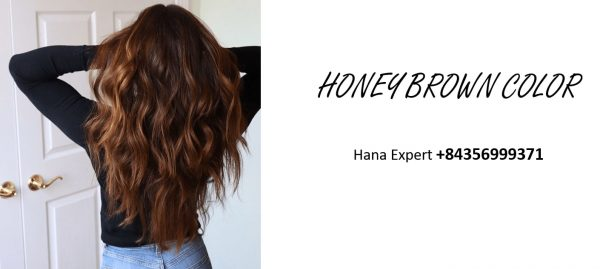wig-and-hair-extension-honey-brown-color
