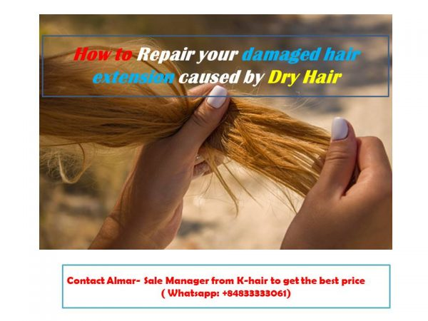 How to Repair your damaged hair extension caused by Dry Hair