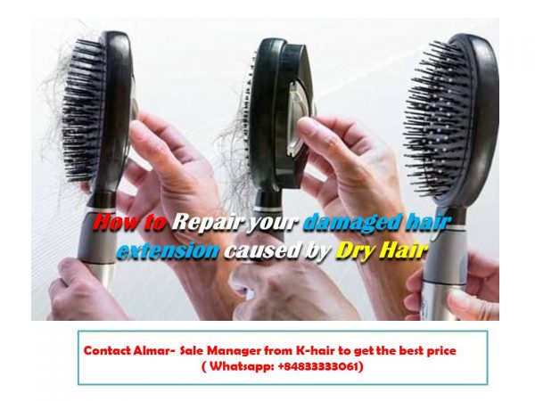 How to Repair your damaged hair extension caused by Shedding Hair