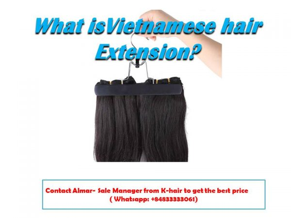 What is Vietnamese hair extension