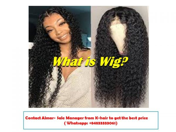 What is Wig