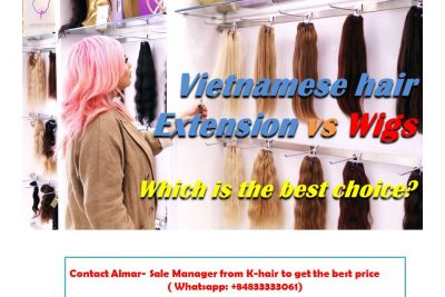 Which is the best choice between Vietnamese hair extension vs Wigs