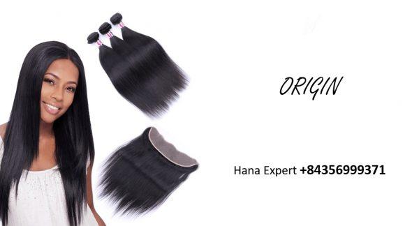 Vietnamese-Super-Double-drawn-weft-straight-hair-origin