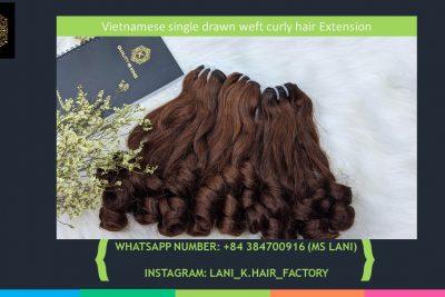 Vietnamese single drawn weft curly hair 3