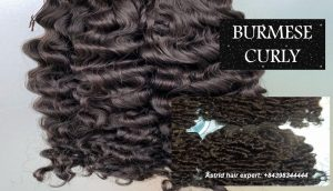 vietnamese-burmese-curly-weft-hair