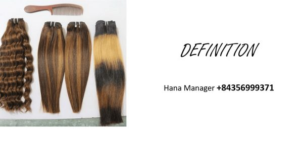 vietnamese-raw-remy-hair-extensions-definition