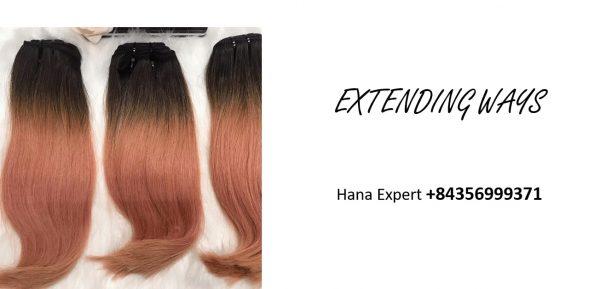 vietnamese-raw-remy-hair-extensions-extending-ways