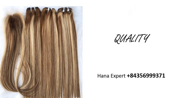 vietnamese-raw-remy-hair-extensions-quality