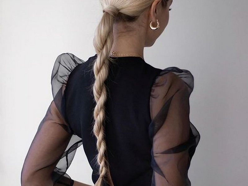 Sleek Braided Ponytail. - Stylish Chic Ponytail.