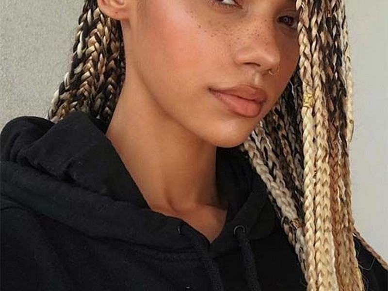 Box Braids - Summer Hair Extension Styles For The Baddies.
