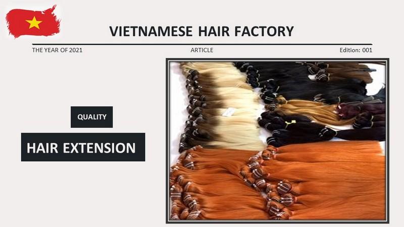 Vietnamese Hair Extension