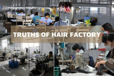 Overview of hair factory