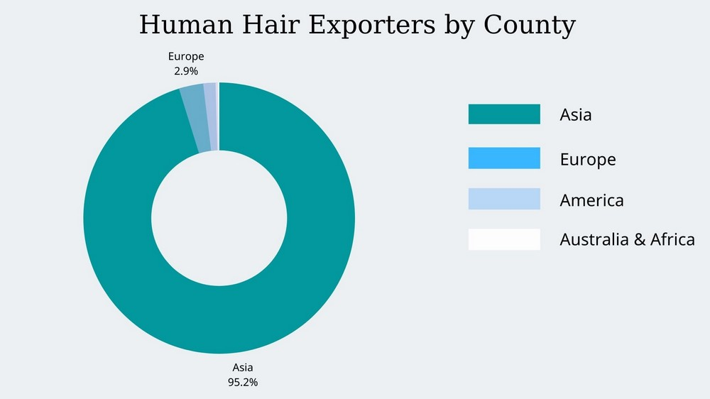 Wholesale-hair-vendors-exporters-by-county